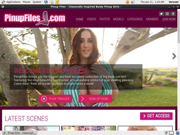 Discount Pinupfiles Trial Offer