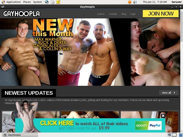 Free Download Gay Hoopla